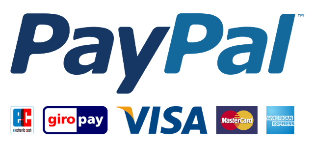 Электронная платежная система PayPal