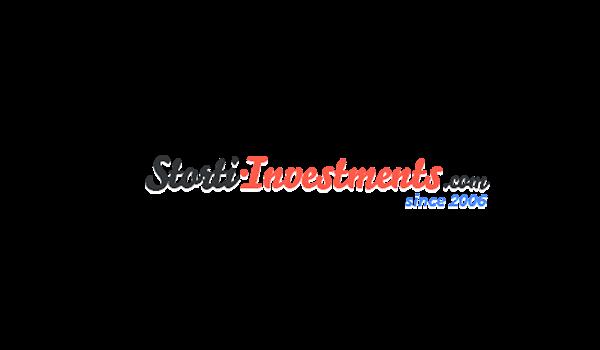 Storti Investments: обзор и отзыв