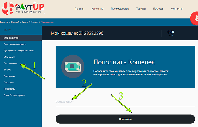 Как инвестировать в PaytUP