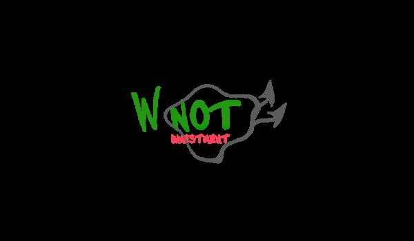 Why Not: отзыв и обзор (wnot.io)