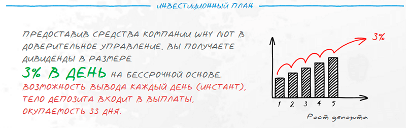 Инвестиции в Why Not (wnot.io)