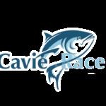 Cavie Race: отзыв и обзор