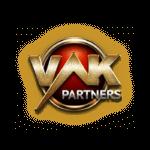 VLK Partners: как это работает