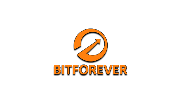 BitForever: обзор и отзыв