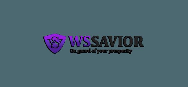 WSSavior: обзор зарубежного проекта